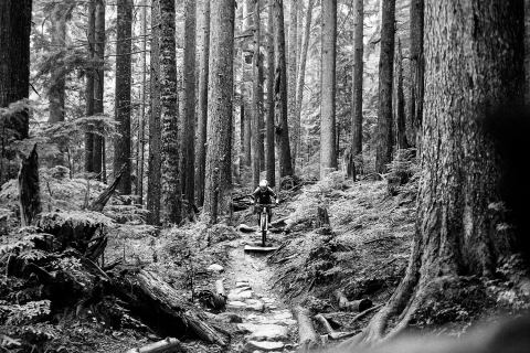 Jarno Schurgers Photography Vancouver MTB